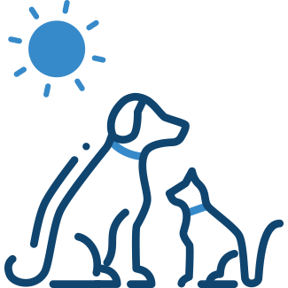 Dog and cat – Pet Insurance